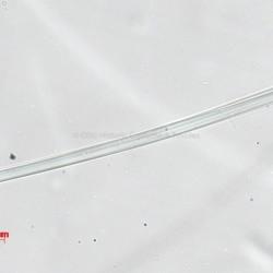 Applique Ribbon - Silk Fiber