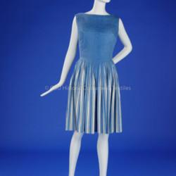 Blue/White Vera Maxwell Dress